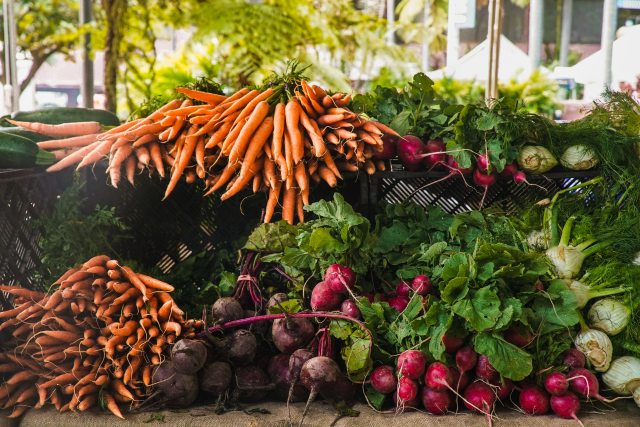 agriculture-carrots-food-1656663